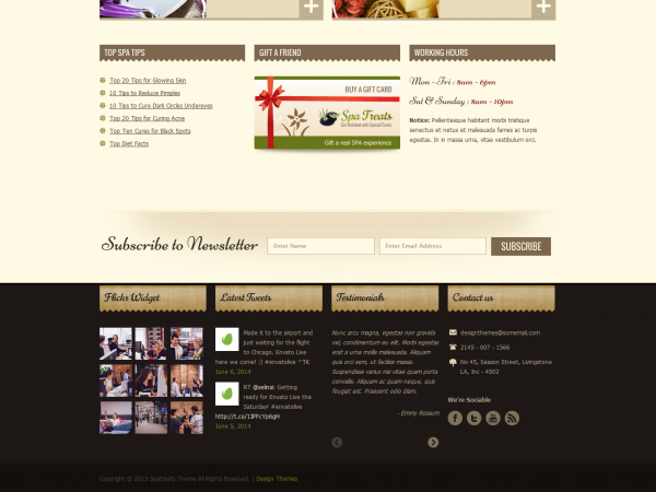thiet-ke-web-cho-spa-treats-3