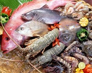 Thiết Kế Website Thủy Hải Sản